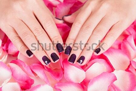 Beautiful manicured nails Stock photo © AndreyPopov