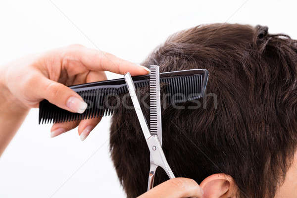 Person Getting Haircut From Hairdresser Stock photo © AndreyPopov