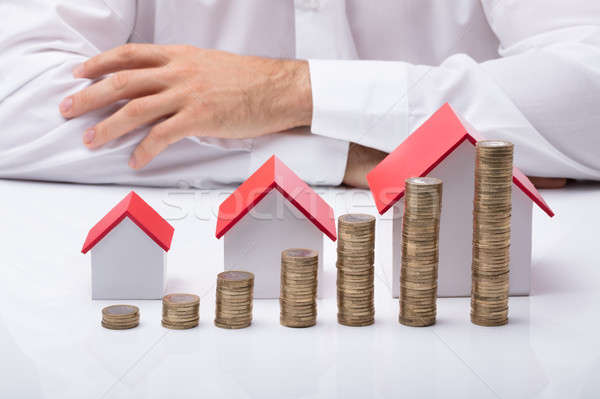 Businessman With Different Size Houses And Stacks Of Coins Stock photo © AndreyPopov