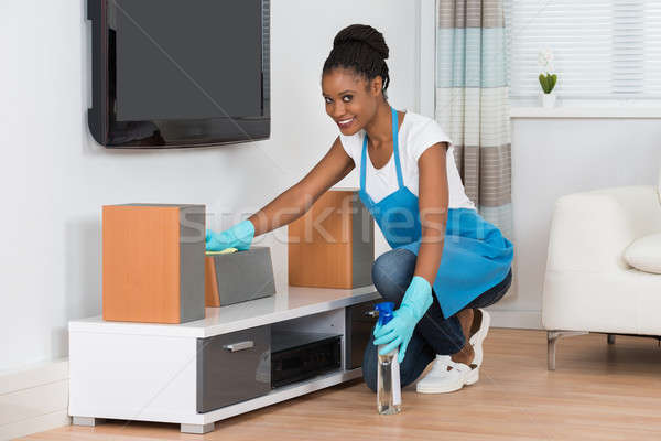 Woman Cleaning Living Room Stock photo © AndreyPopov