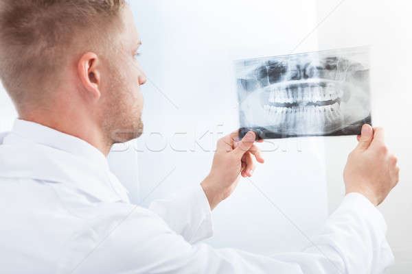 Doctor studying an x-ray film Stock photo © AndreyPopov