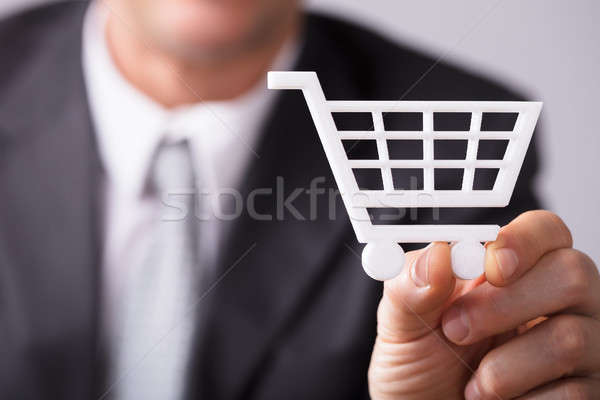 Businessperson Holding Shopping Cat Stock photo © AndreyPopov