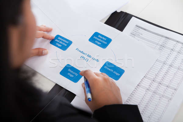 деловая женщина изучения диаграмма служба бизнеса Сток-фото © AndreyPopov
