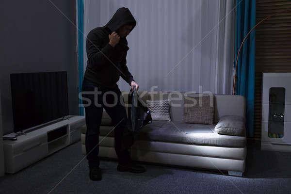 Rabló áll nappali tart elemlámpa számítógép Stock fotó © AndreyPopov