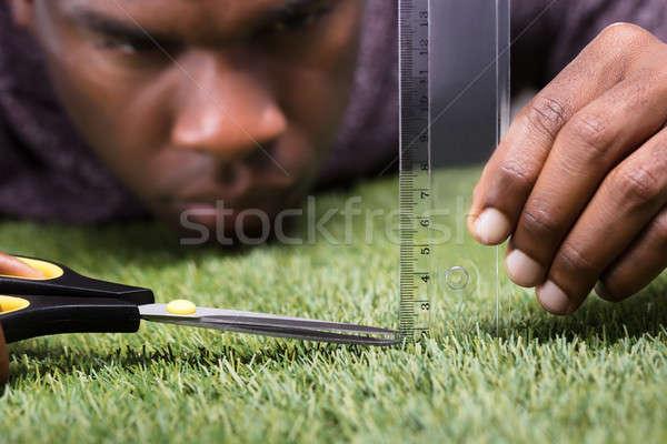 Man gras groen gras hand Stockfoto © AndreyPopov