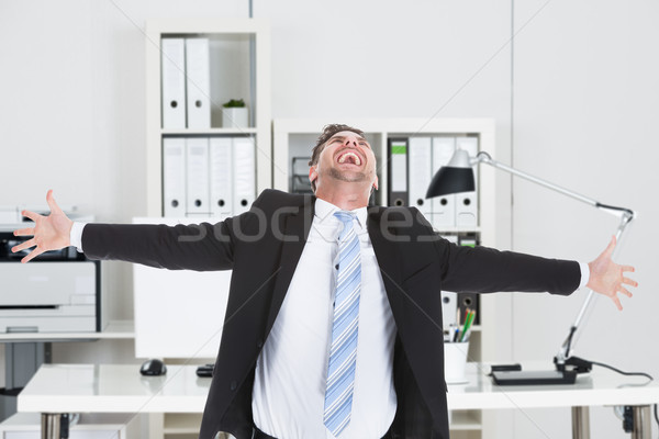 Businessman Laughing While Standing With Arms Outstretched Stock photo © AndreyPopov