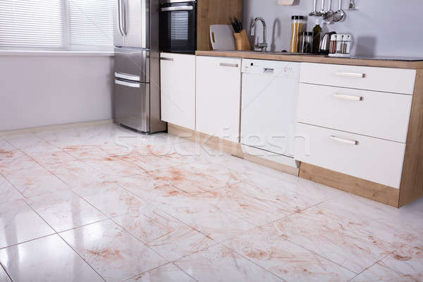 Dirty Floor In Kitchen Stock photo © AndreyPopov
