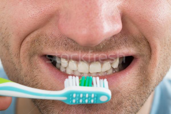 Közelkép férfi fogmosás felnőtt száj fogak Stock fotó © AndreyPopov