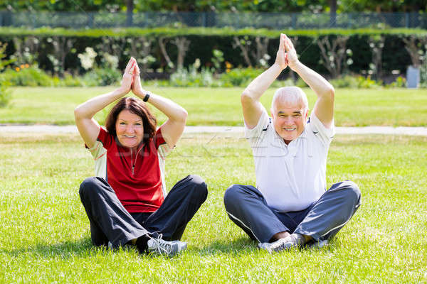 Couple Practising Yoga In Park Stock photo © AndreyPopov