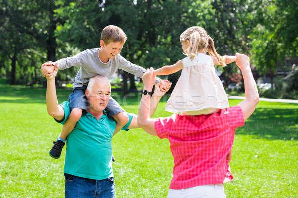 Dziadkowie wnuki na barana parku szczęśliwy starych Zdjęcia stock © AndreyPopov