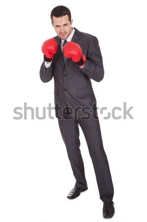 Competitivo empresario guantes de boxeo aislado blanco negocios Foto stock © AndreyPopov