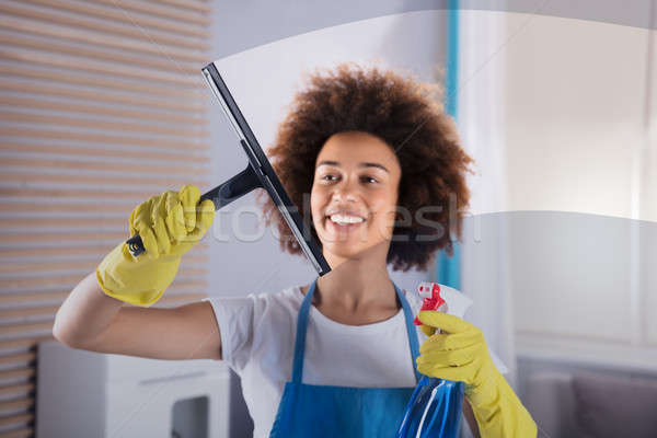 Woman Cleaning Glass Window With Squeegee Stock photo © AndreyPopov
