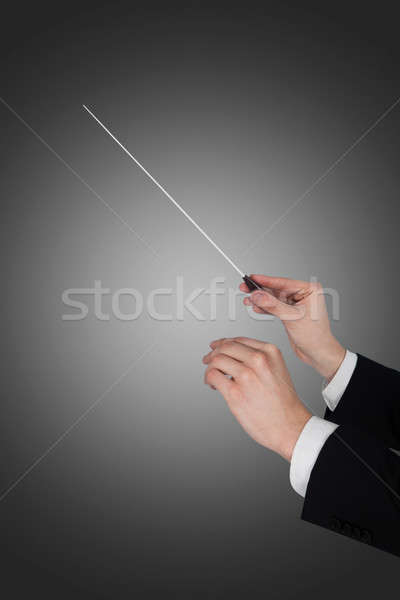 Music Conductor's Hands Holding Baton Stock photo © AndreyPopov
