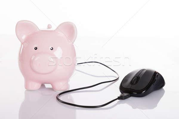 Online finansów odizolowany biały ceny Internetu Zdjęcia stock © AndreyPopov