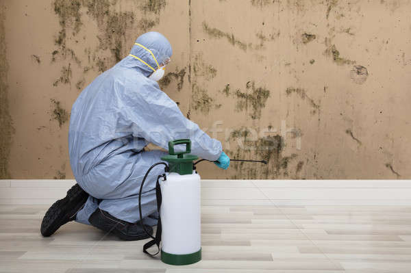 Pest Control Worker Spraying Pesticide On Wall With Sprayer Stock photo © AndreyPopov