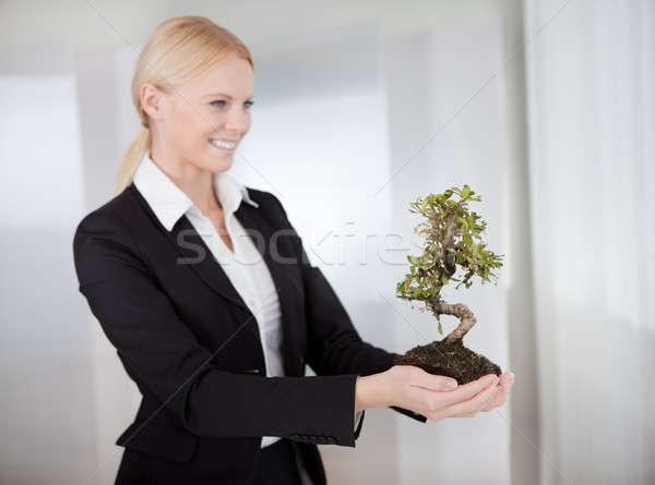 Businesswoman holding Bonsai tree Stock photo © AndreyPopov
