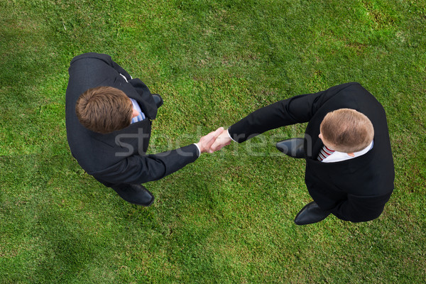 Businessmen Shaking Hands While Standing On Grassy Field Stock photo © AndreyPopov