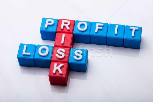 Risco lucro perda palavras cruzadas branco fundo Foto stock © AndreyPopov