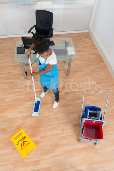Woman Cleaning Hardwood Floor With Mop Stock photo © AndreyPopov