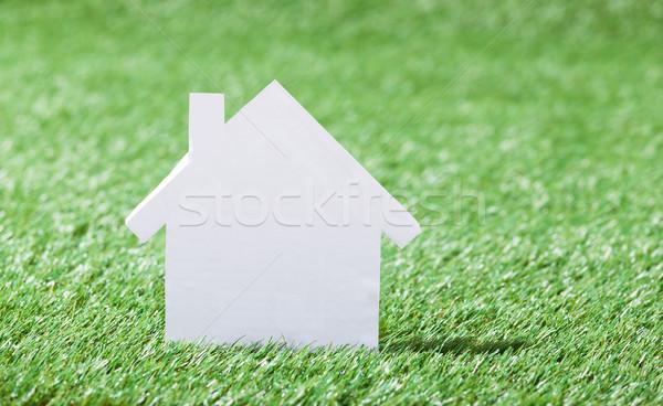 Maison modèle herbeux domaine construction Photo stock © AndreyPopov