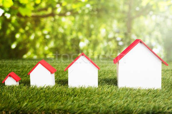 различный размер домах травянистый области Сток-фото © AndreyPopov