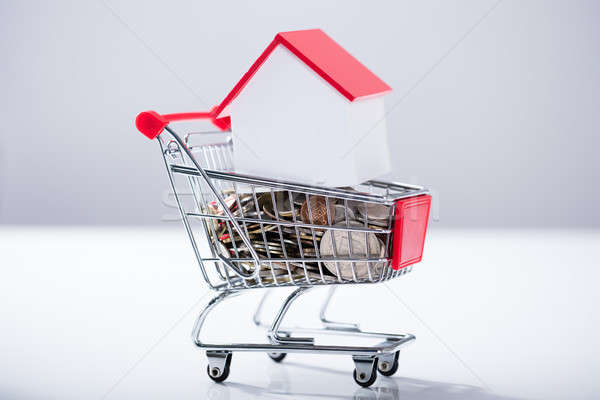 Heap Of Coins And House Model In The Shopping Trolley Stock photo © AndreyPopov
