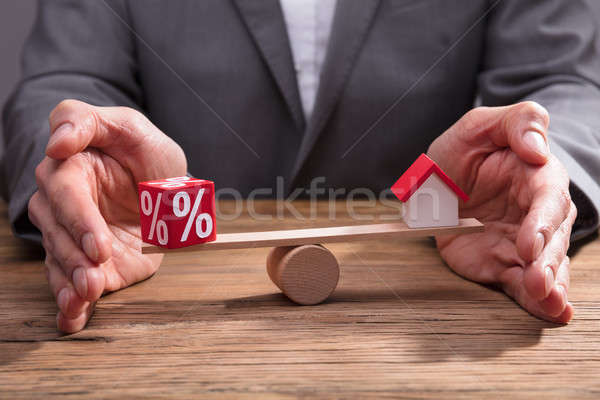 Businessperson Protecting Balance Between Percentage And House Stock photo © AndreyPopov