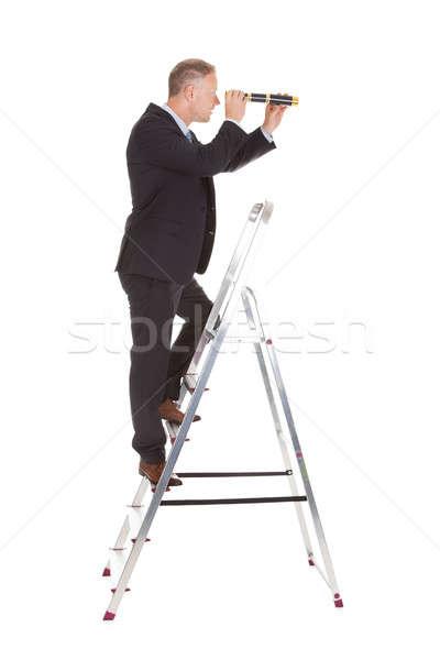 Biznesmen drabiny patrząc teleskop widok z boku Zdjęcia stock © AndreyPopov