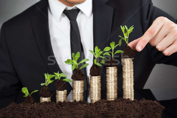 Businessman Stacking Saplings On Coins Representing Growth Stock photo © AndreyPopov