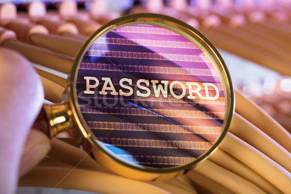 Hand wachtwoord vergrootglas kabels afbeelding server Stockfoto © AndreyPopov