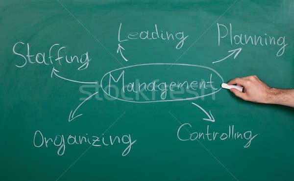 Management Chart Stock photo © AndreyPopov