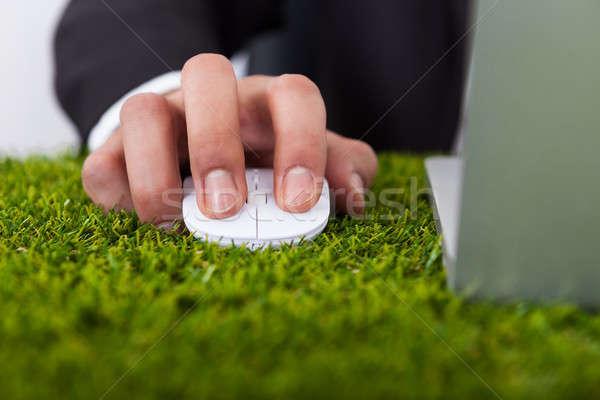 Işadamı dizüstü bilgisayar kullanıyorsanız bilgisayar fare çim Internet doğa Stok fotoğraf © AndreyPopov