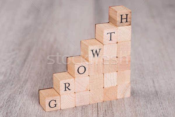 Growth Blocks Arranged As Progressive Graph Stock photo © AndreyPopov