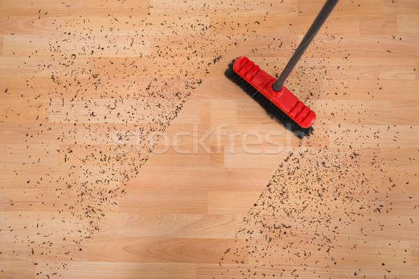 Süpürge temizlik kir görmek Stok fotoğraf © AndreyPopov