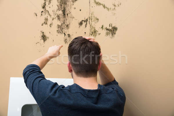 Man Pointing At Mold On Wall Stock photo © AndreyPopov