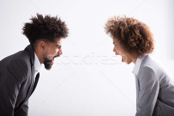 Two Angry Business Partners Shouting At Each Other Stock photo © AndreyPopov