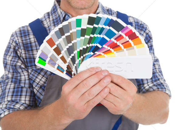 Handyman Showing Fanned Color Swatches Stock photo © AndreyPopov