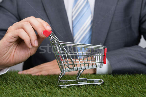 Businessman Holding Shopping Cart On Grass Stock photo © AndreyPopov