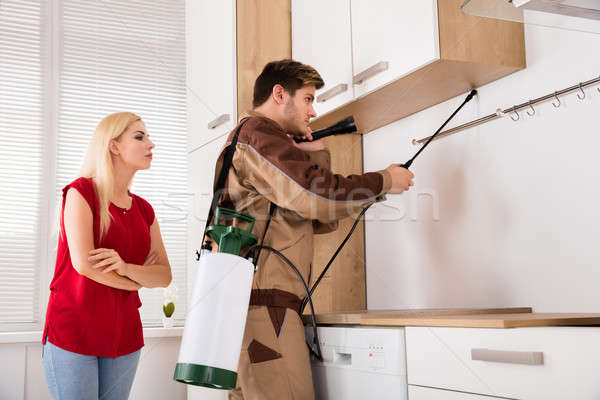 Male Worker Spraying Insecticide In Kitchen Stock photo © AndreyPopov