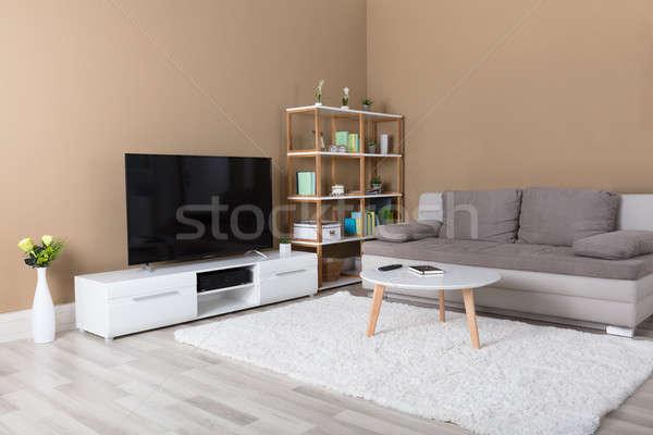 Appartement télévision canapé modernes salon maison Photo stock © AndreyPopov