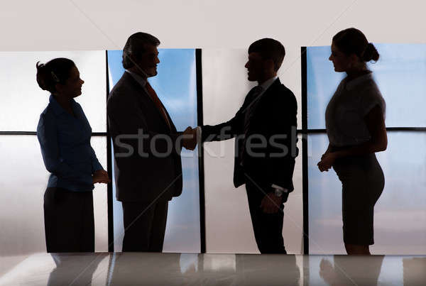 Businesspeople Shaking Hands Stock photo © AndreyPopov