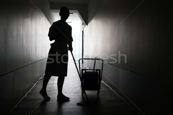 Sylwetka pokojówka czyszczenia piętrze kobiet sali Zdjęcia stock © AndreyPopov