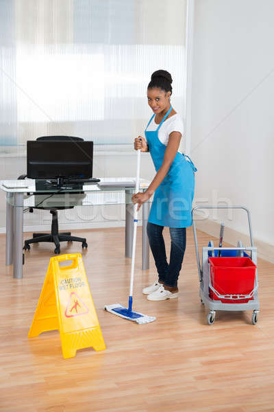 Woman Cleaning Hardwood Floor Stock photo © AndreyPopov