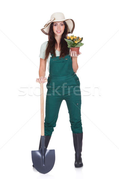 Beautiful Woman Holding Plant And Gardening Shovel Stock photo © AndreyPopov