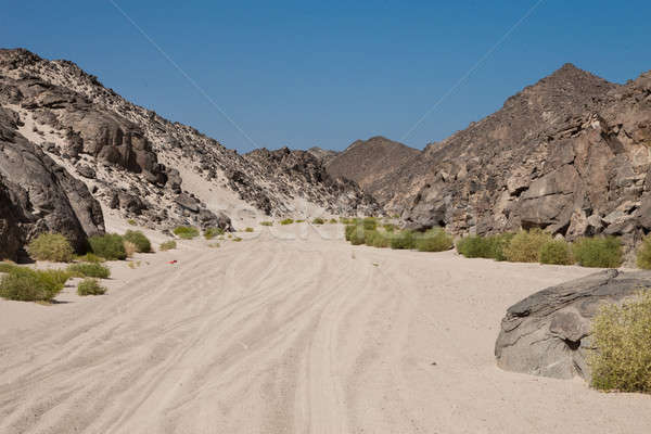 Tire Track On Desert Stock photo © AndreyPopov