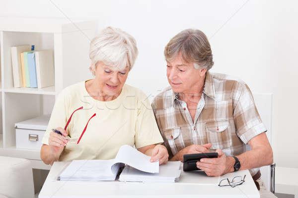 Senior Couple Doing Their Finances Stock photo © AndreyPopov