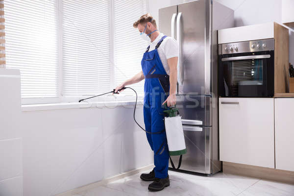 Man Spraying Pesticide On Windowsill Stock photo © AndreyPopov