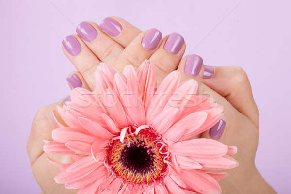 Human Fingers With Beautiful Manicure Stock photo © AndreyPopov