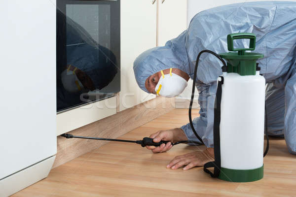 Exterminator Spraying Pesticide On Wooden Cabinet Stock photo © AndreyPopov