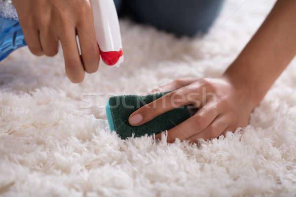 Close-up Of A Person's Hand Cleaning Carpet Stock photo © AndreyPopov